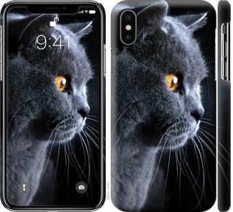 Чехол на iPhone X Красивый кот