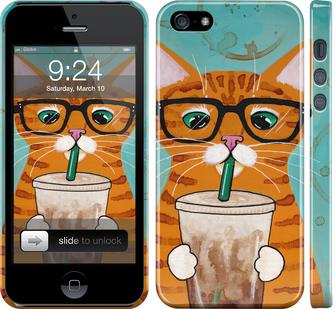 Чехол на iPhone SE Зеленоглазый кот в очках