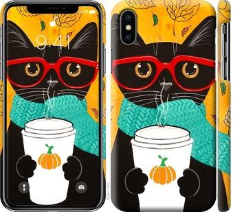 Чехол на iPhone XS Осенний кот