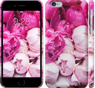 Чехол на iPhone 6 Розовые пионы