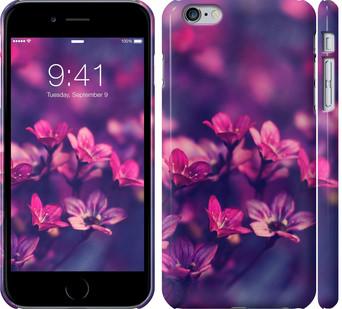 Чехол на iPhone 6 Plus Пурпурные цветы