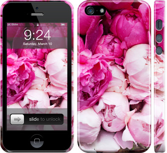 Чехол на iPhone 5 Розовые пионы