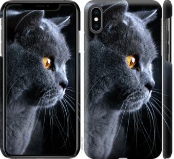 Чехол на iPhone XS Max Красивый кот