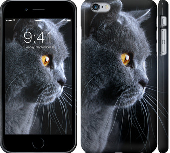 Чехол на iPhone 6s Plus Красивый кот