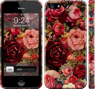 Чехол на iPhone 5s Цветущие розы