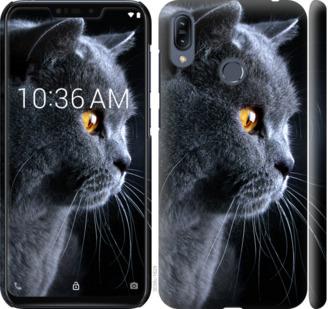 Чехол на Asus Zenfone Max M2 ZB633KL Красивый кот