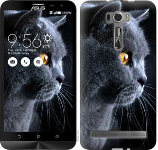 Чехол на Asus ZenFone 2 Laser ZE601KL Красивый кот