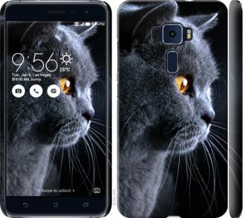 Чехол на Asus Zenfone 3 ZE520KL Красивый кот