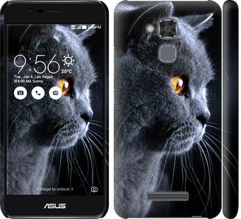 Чехол на Asus Zenfone 3 Max ZC520TL Красивый кот