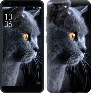 Чехол на Asus ZenFone Max Plus M1 ZB570TL Красивый кот