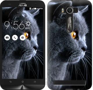 Чехол на Asus ZenFone 2 Laser 2 ZE550KL Красивый кот