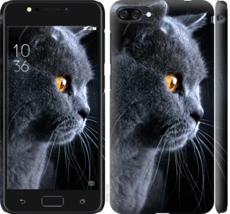 Чехол на Asus ZenFone 4 Max ZC554KL Красивый кот