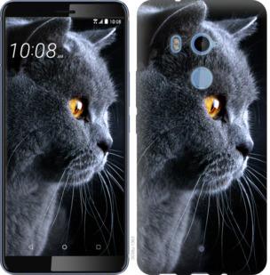 Чехол на HTC U11 Plus Красивый кот