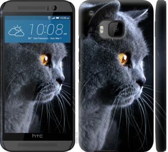 Чехол на HTC One M9 Красивый кот