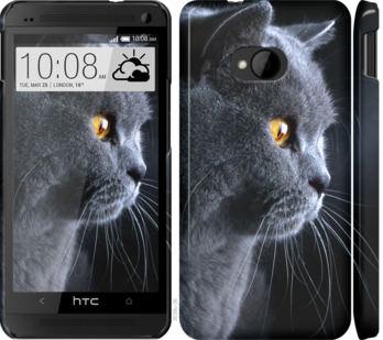 Чехол на HTC One M7 Красивый кот
