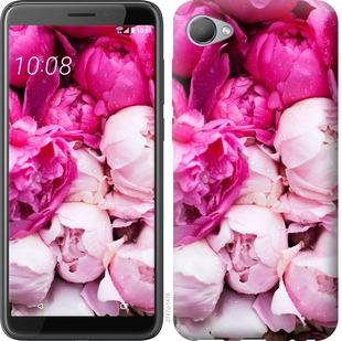 Чехол на HTC Desire 12 Розовые пионы