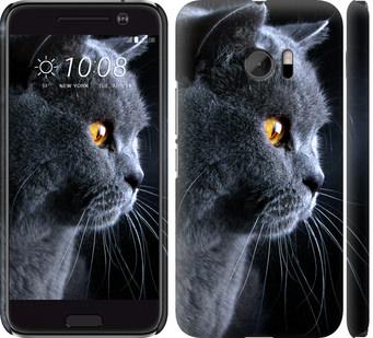 Чехол на HTC 10 Красивый кот