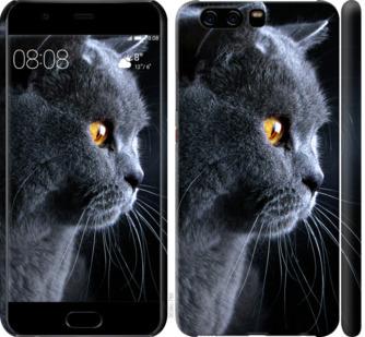 Чехол на Huawei P10 Красивый кот
