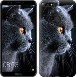 Чехол на Huawei Y7 Prime 2018 Красивый кот