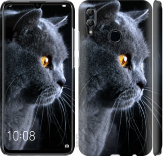 Чехол на Huawei Honor 10 Lite Красивый кот