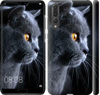 Чехол на Huawei P20 Pro Красивый кот