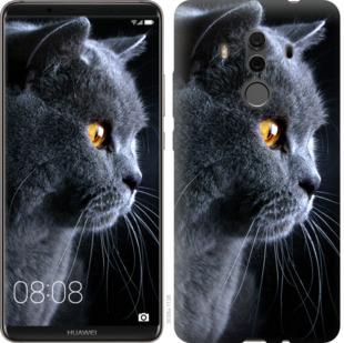 Чехол на Huawei Mate 10 Pro Красивый кот