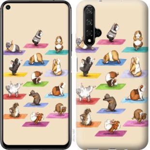 Чехол на Huawei Honor 20 Йога морских свинок
