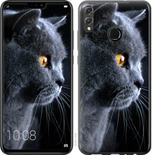 Чехол на Huawei Honor 8X Красивый кот