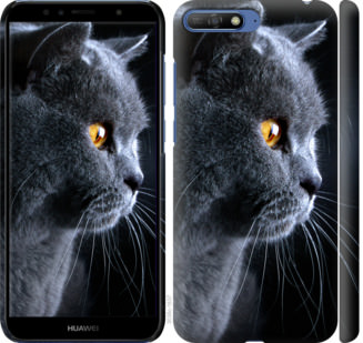 Чехол на Huawei Y6 2018 Красивый кот