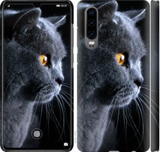 Чехол на Huawei P30 Красивый кот