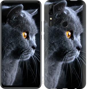 Чехол на Huawei P Smart Z Красивый кот