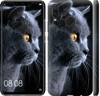 Чехол на Huawei Nova 3 Красивый кот