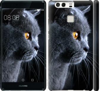 Чехол на Huawei P9 Красивый кот