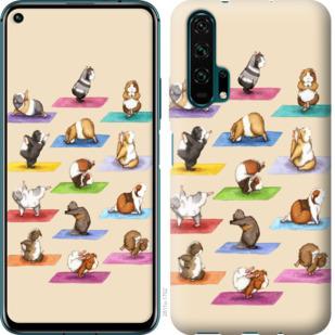 Чехол на Huawei Honor 20 Pro Йога морских свинок