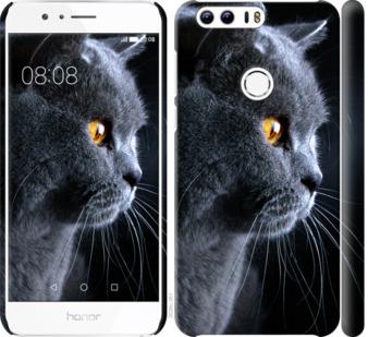 Чехол на Huawei Honor 8 Красивый кот