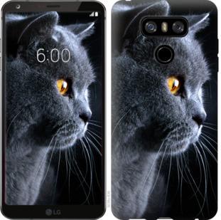 Чехол на LG G6 Красивый кот