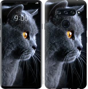 Чехол на LG V40 ThinQ Красивый кот