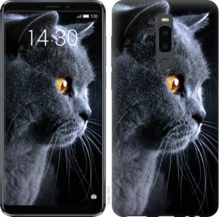 Чехол на Meizu Note 8 Красивый кот