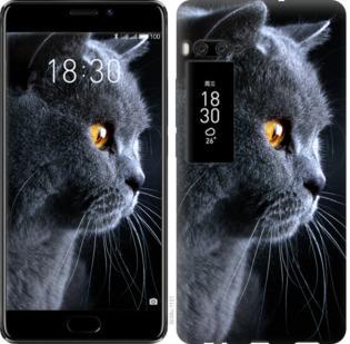 Чехол на Meizu Pro 7 Plus Красивый кот