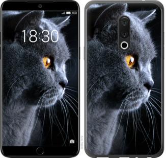 Чехол на Meizu 15 Красивый кот