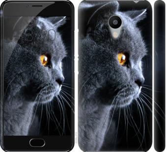 Чехол на Meizu M3s Красивый кот
