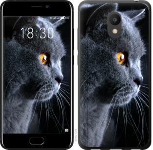 Чехол на Meizu M6 Красивый кот