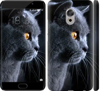 Чехол на Meizu Pro 6 Plus Красивый кот