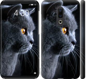 Чехол на Meizu 16th Красивый кот