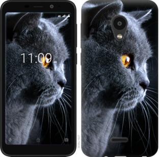 Чехол на Meizu C9 Красивый кот