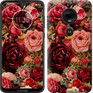Чехол на Motorola Moto G7 Цветущие розы