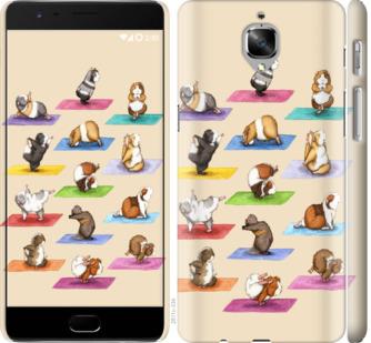 Чехол на OnePlus 3T Йога морских свинок