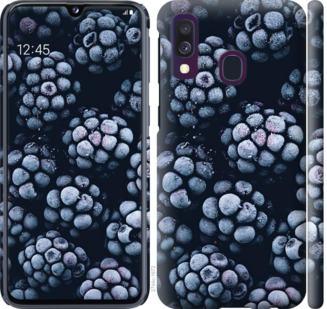 Чехол на Samsung Galaxy A40 2019 A405F Морозная ежевика