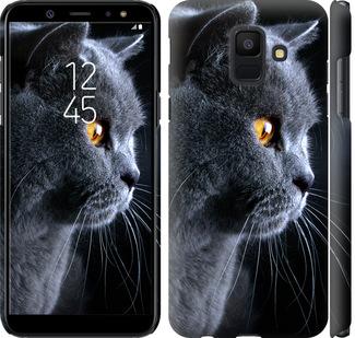 Чехол на Samsung Galaxy A6 2018 Красивый кот