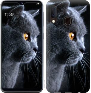 Чехол на Samsung Galaxy A20e A202F Красивый кот